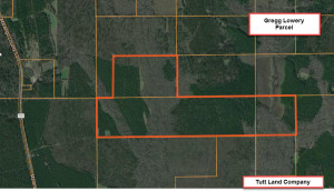 aerial-Gregg Lowery Tract